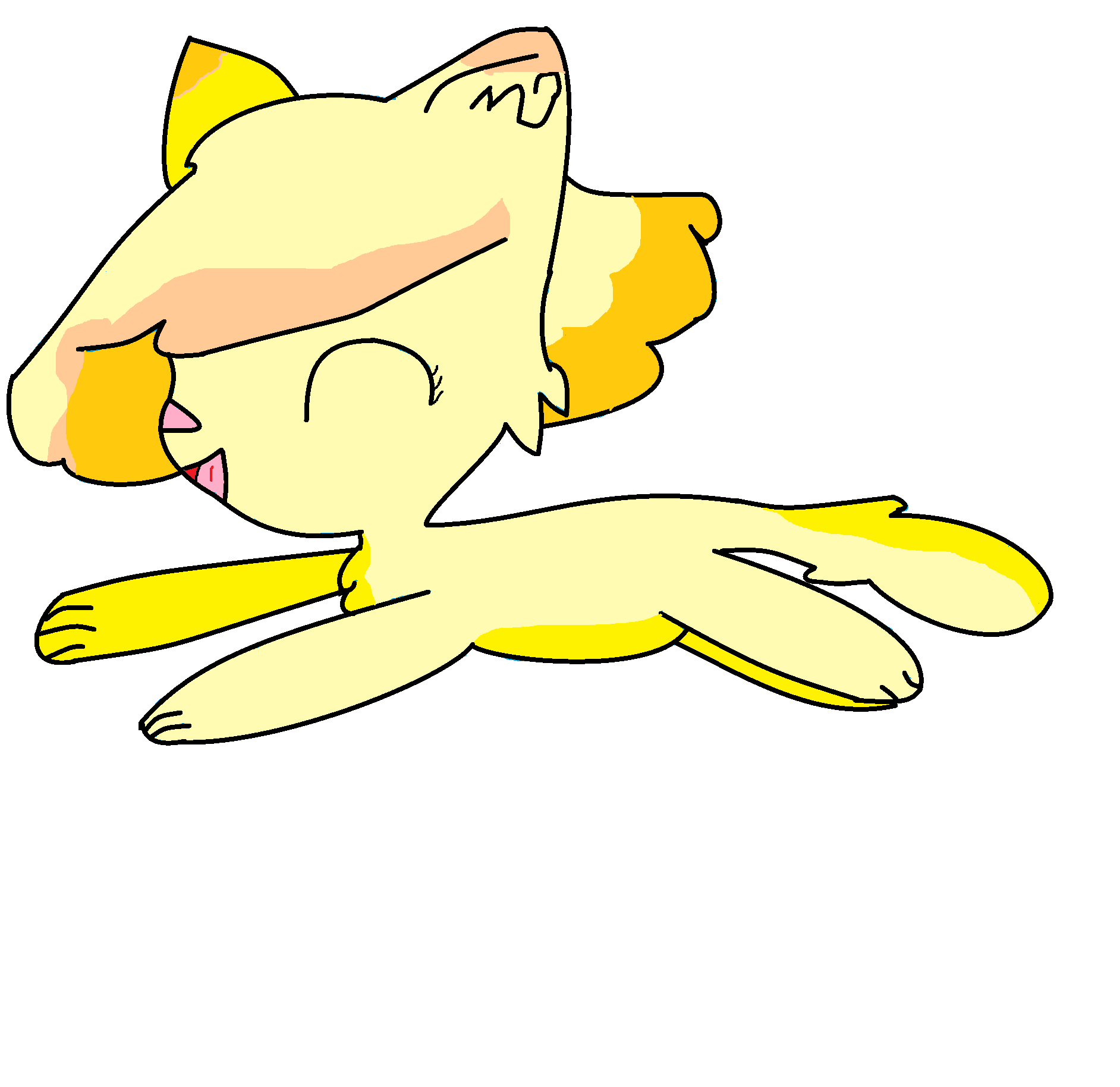Some cat named Orange Creme.