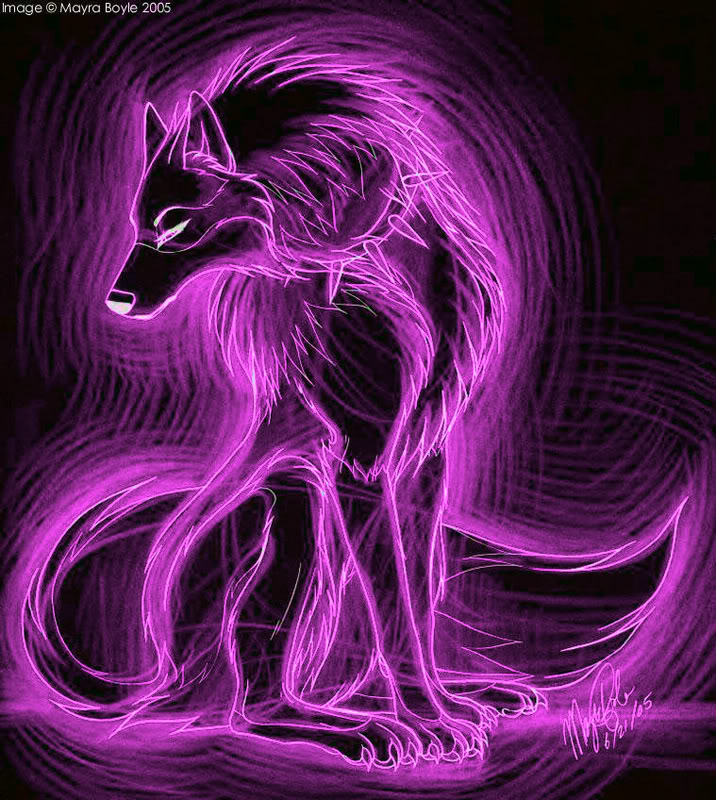 Images Of Cool Wolf Pictures