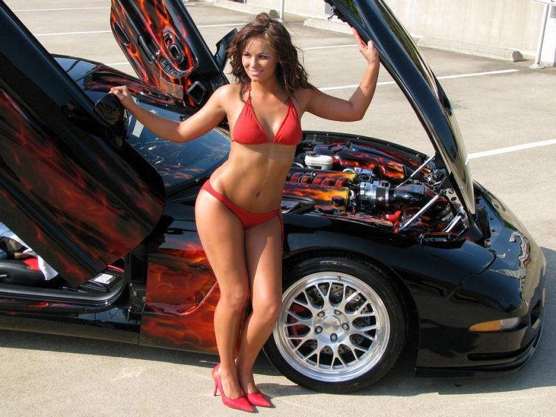 Slick-Shine Show Car Polish