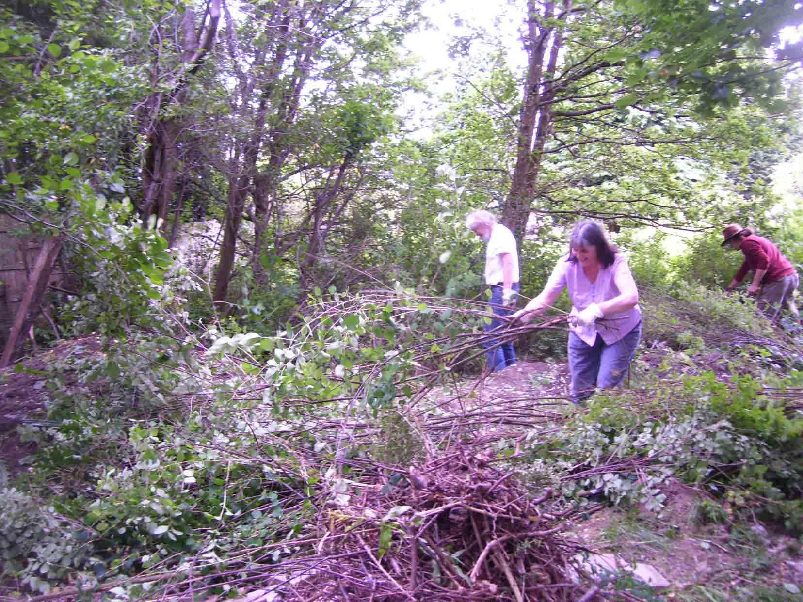 Garden work party, 2009
