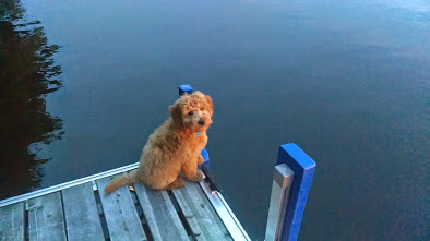 Lakeside at 4 months