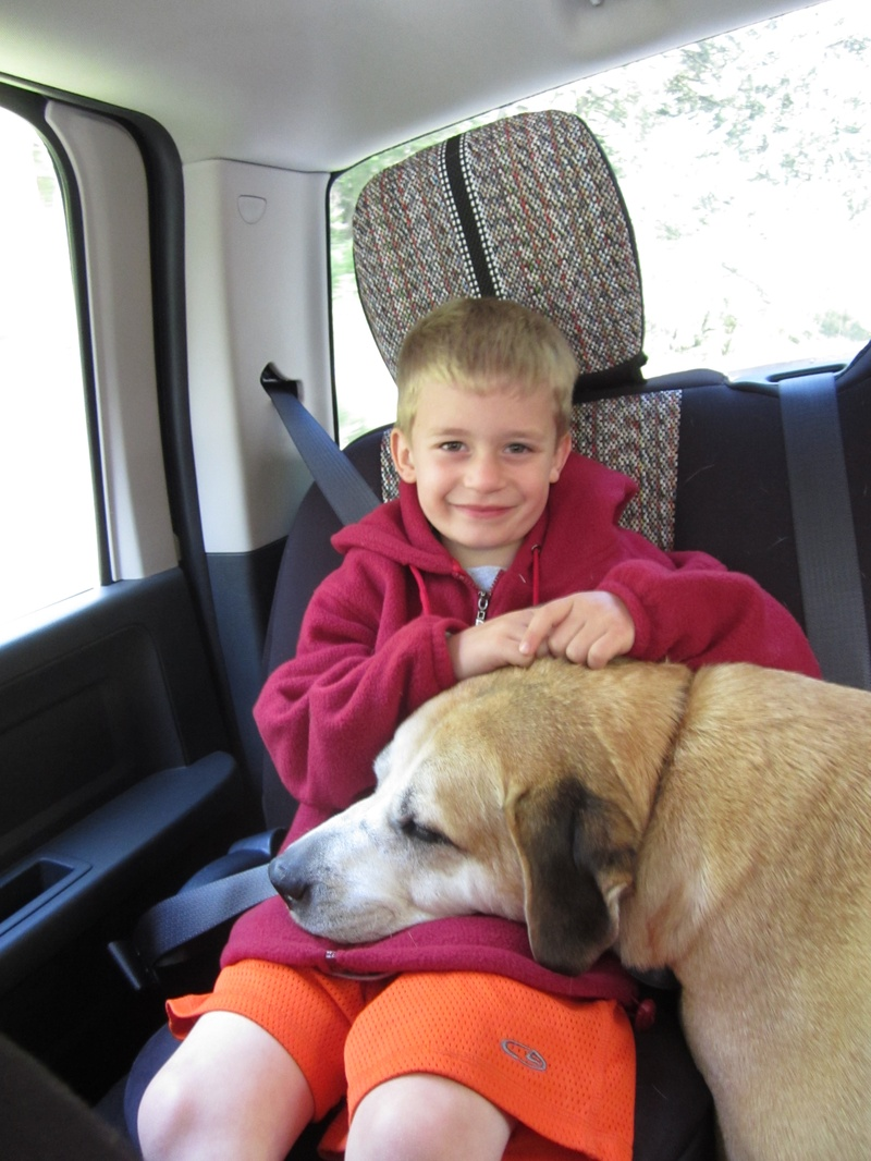 Lil boy loves his big dog