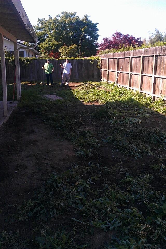 back yard revamp