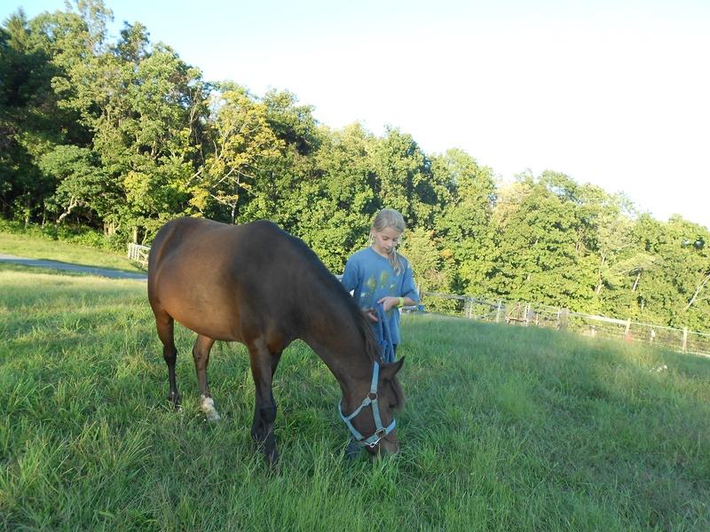 Chloe is grazing Reggie