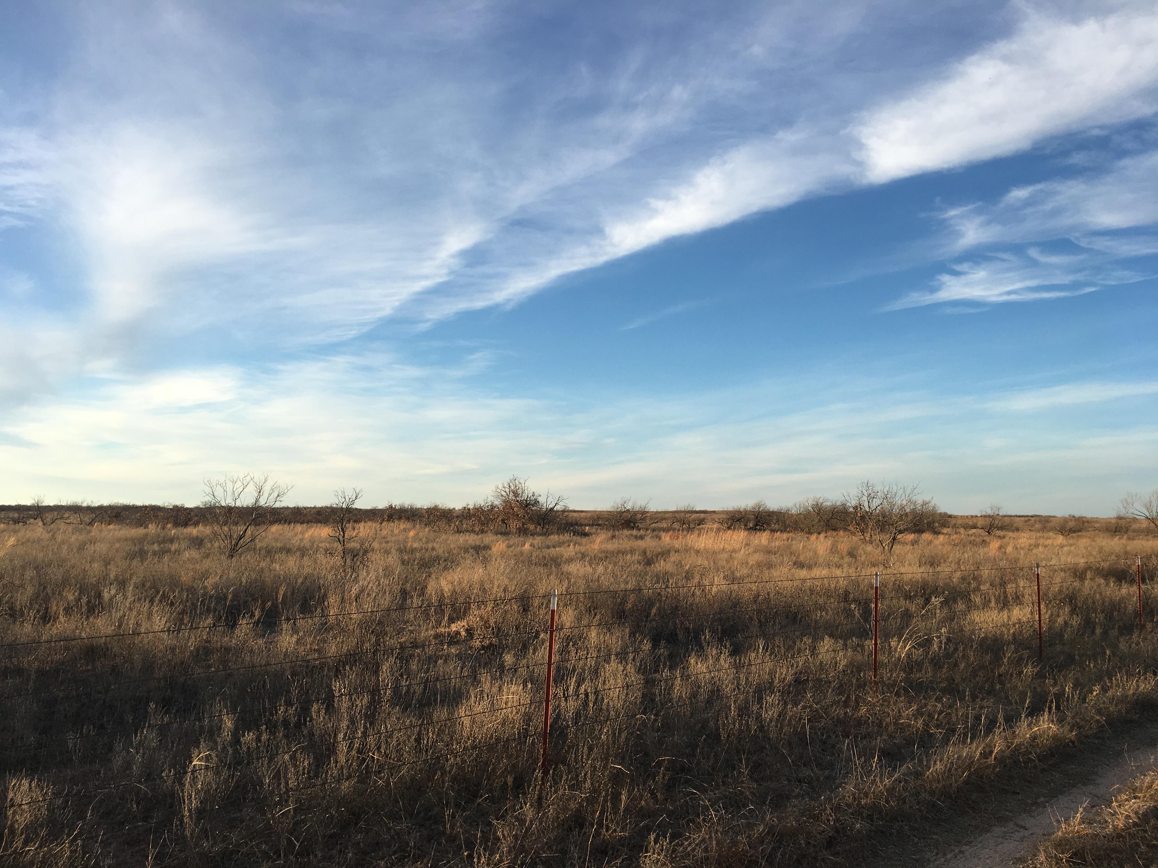 Landscape West Texas