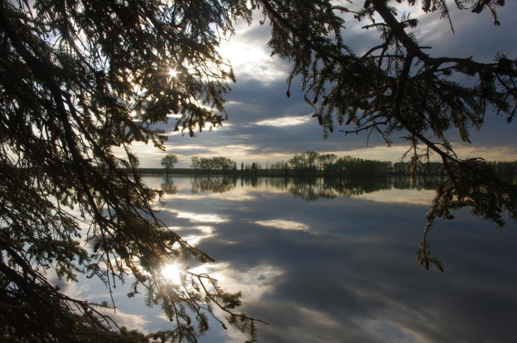 Park Lake Reflections 2