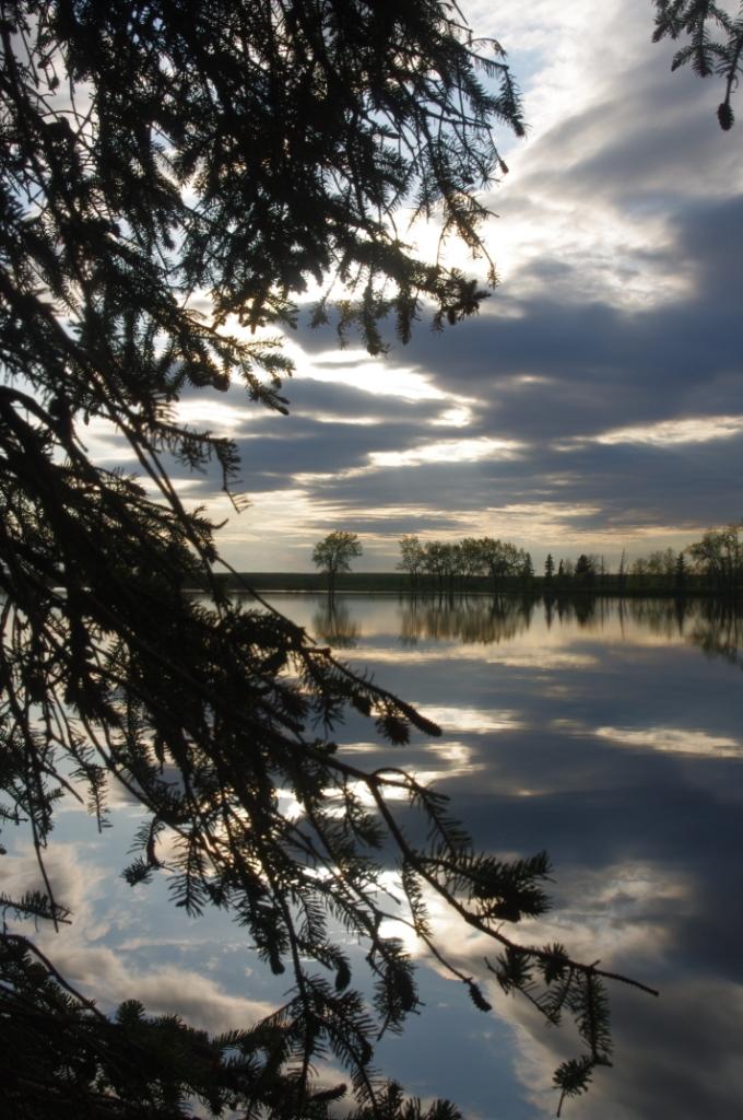 Park Lake Reflections 3