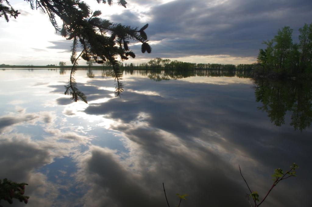 Park Lake Reflections 4