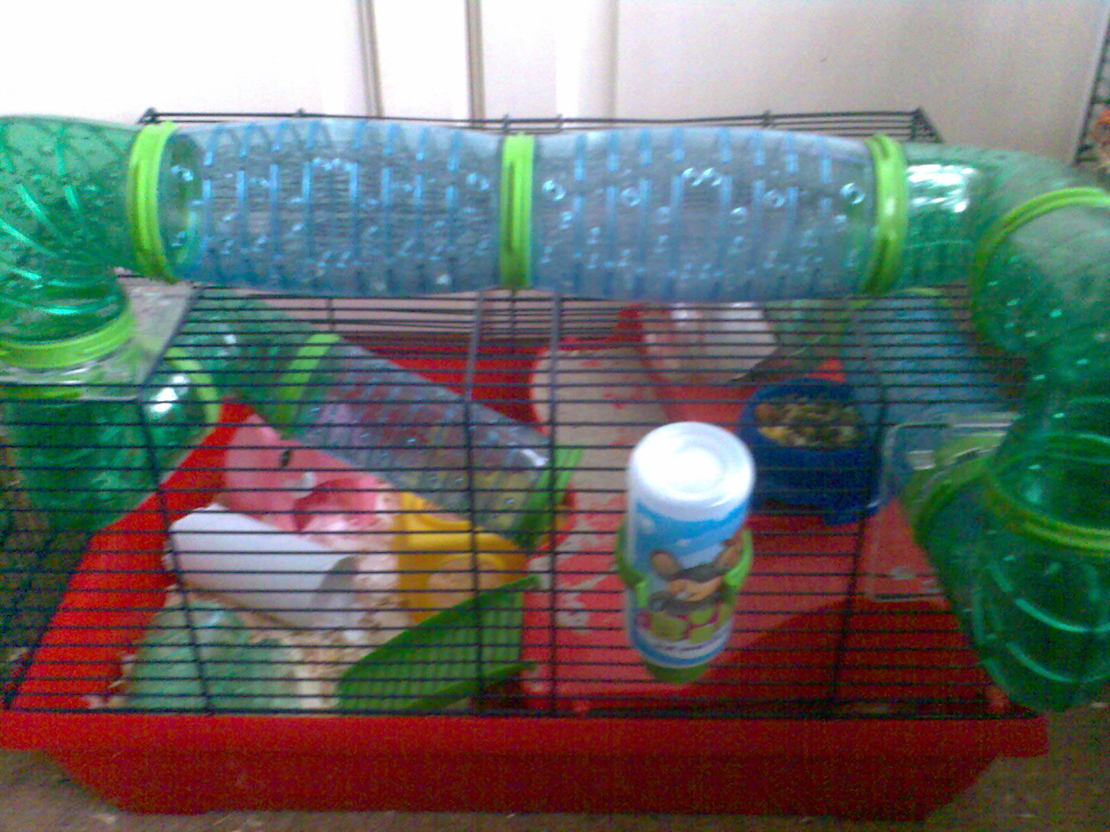Topsy Family Cage