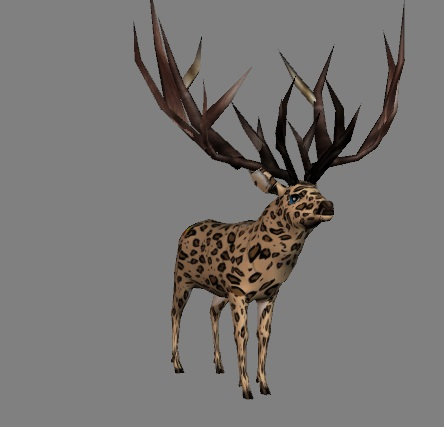 Blacktail from Japa
