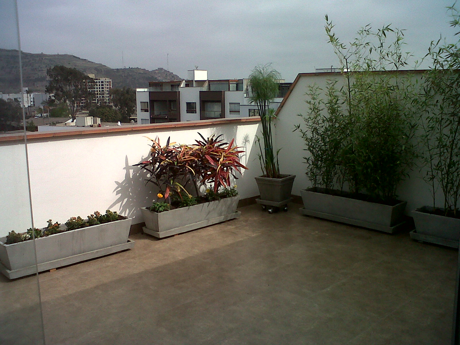 Remodelada for Diseno de jardines en azoteas