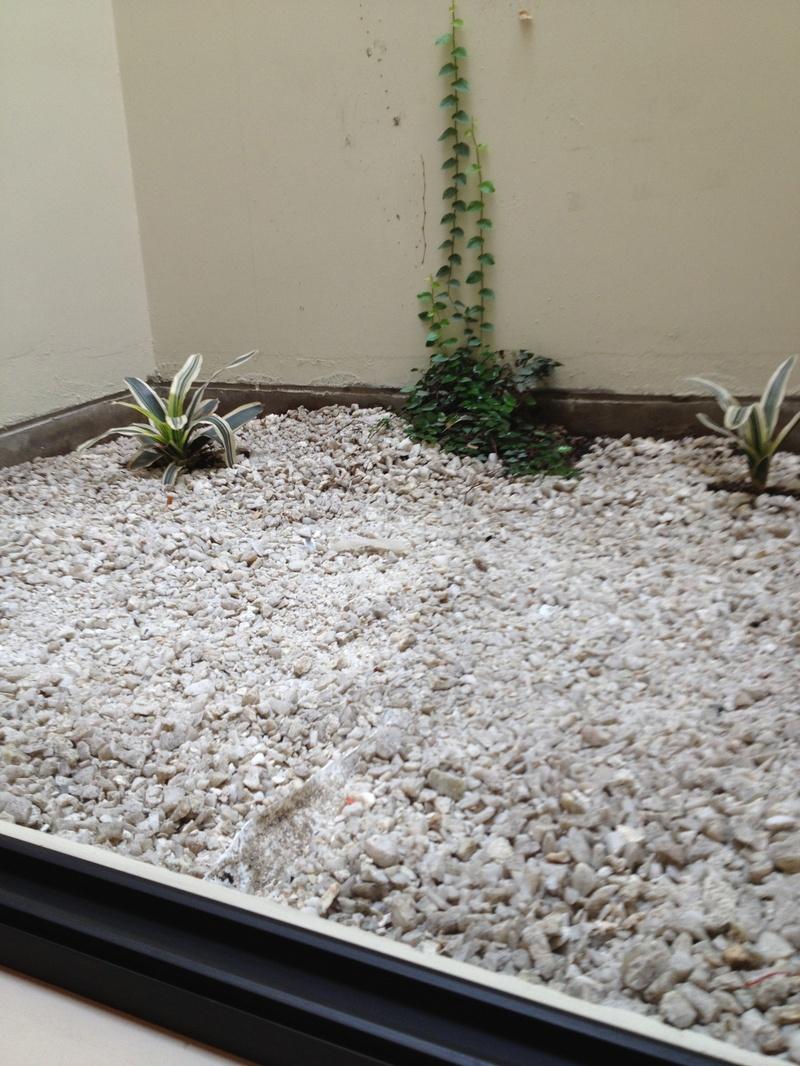 Jardinera Interior En Habitacioacuten - Jardinera-interior
