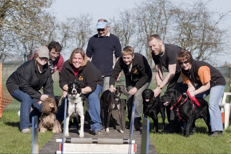 DogStar Flyball Team
