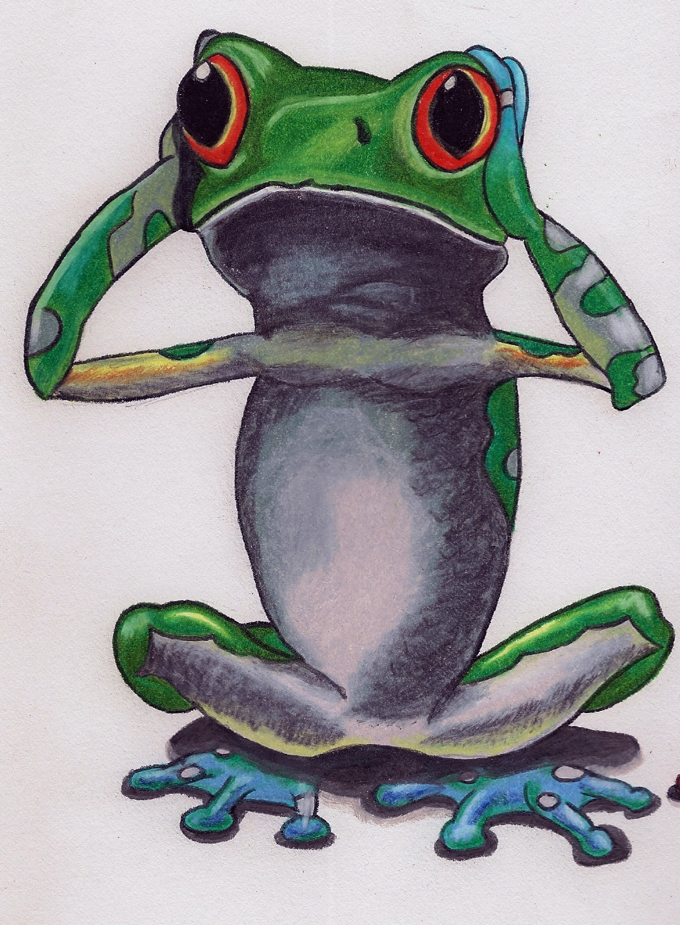 frog drawn in color pencil