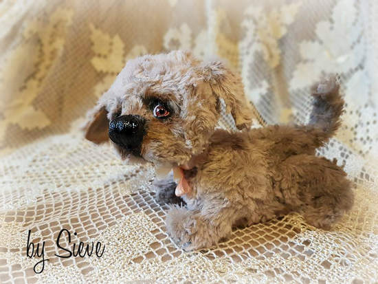 Rozi the puli puppy //  $210.00 USD   Postage: Worldwide   $15.00 USD