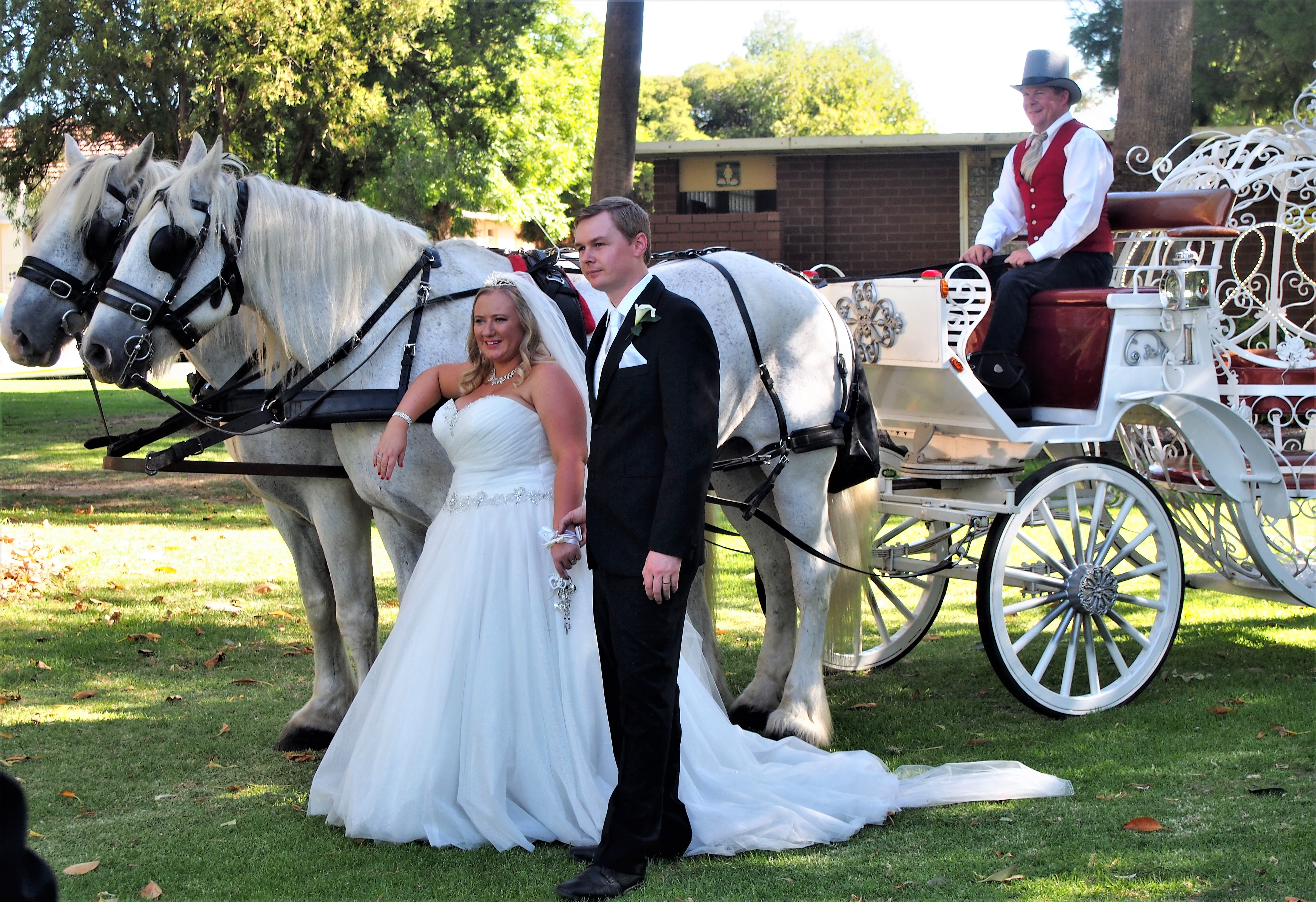 Etain: The Couple & Horses