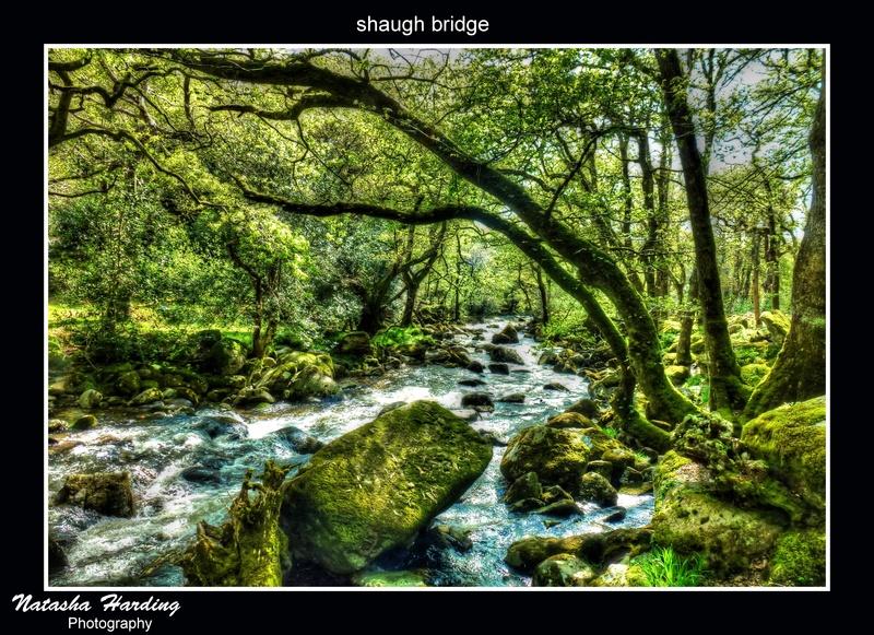 shaugh bridge