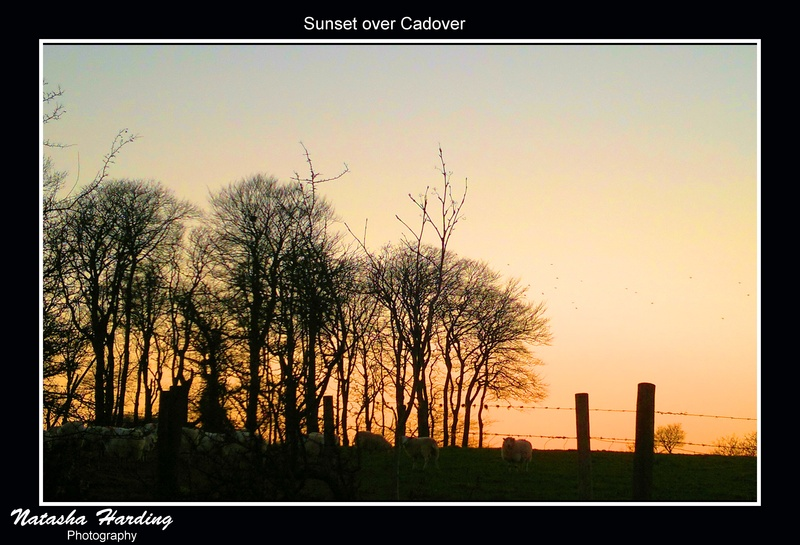 cadover sunset
