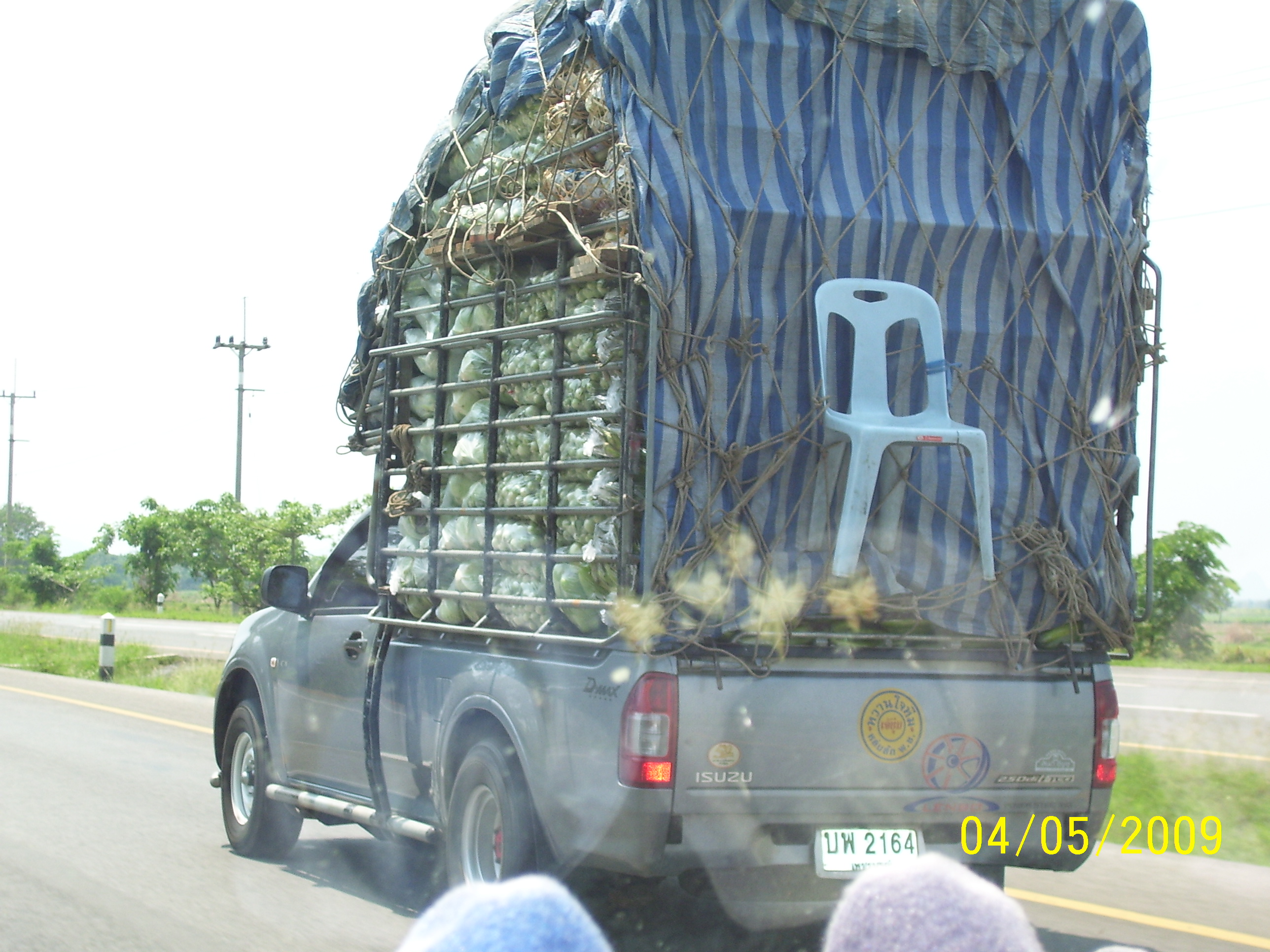 Cabbages on the way to Market