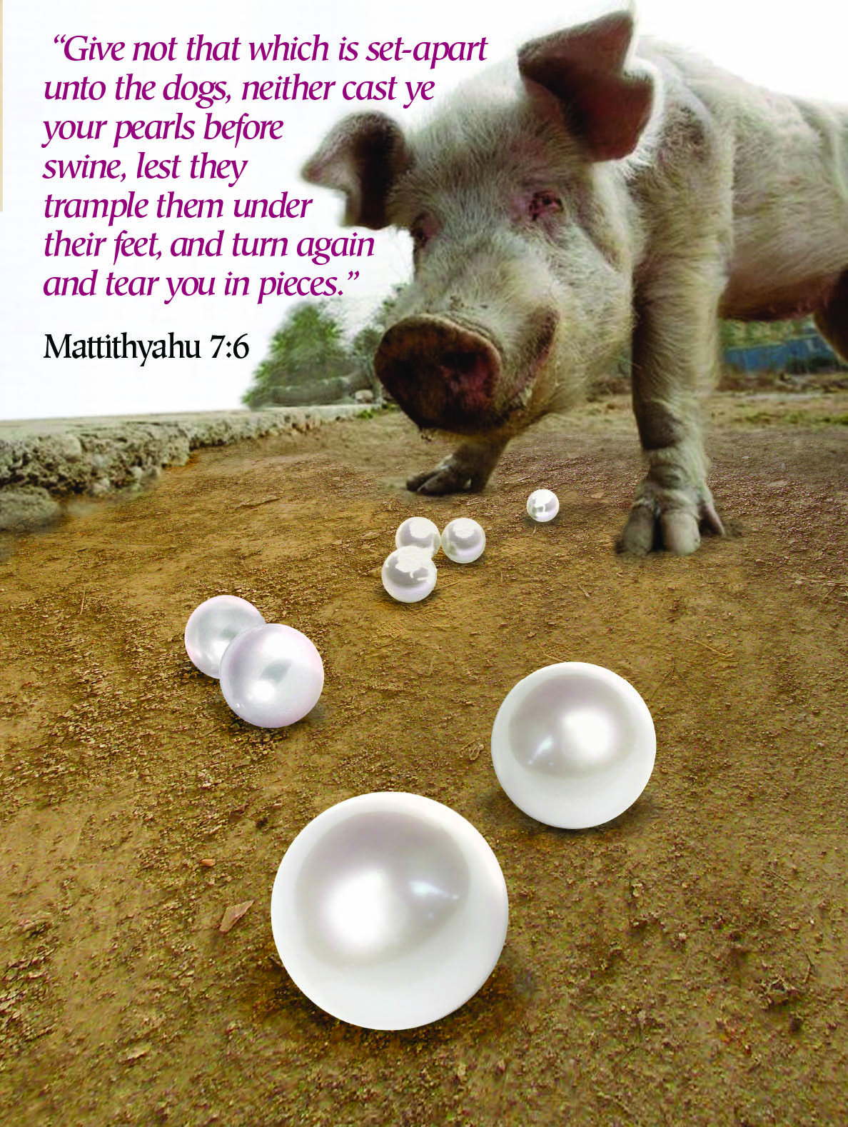 """...Neither cast ye your pearls before swine..."""