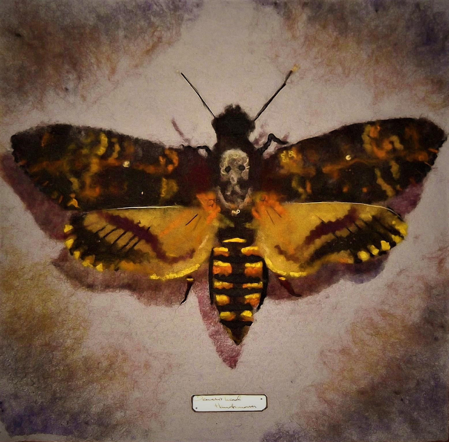 Death'shead Moth