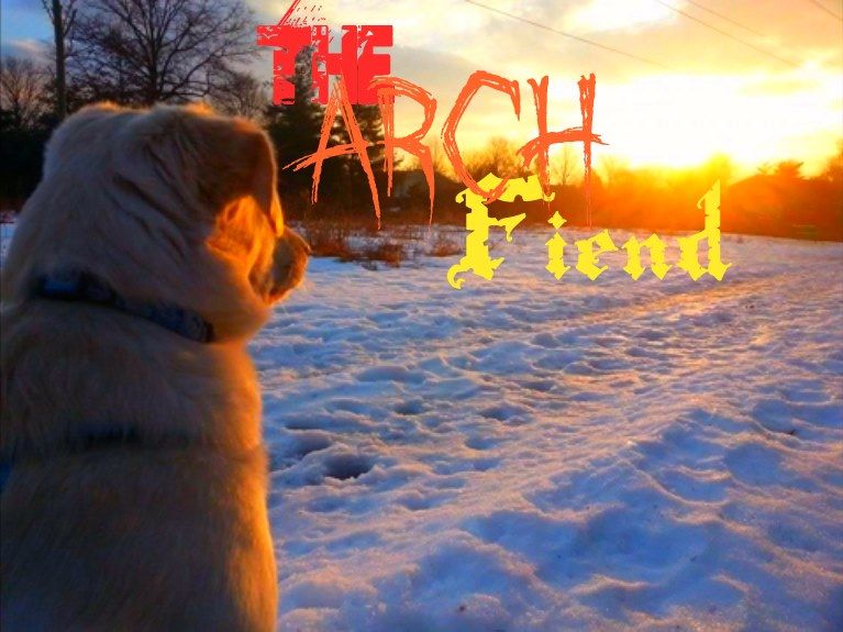 New Dog Stares Into Archfiend's Username Typed Out in Numerous Dramatic Fonts