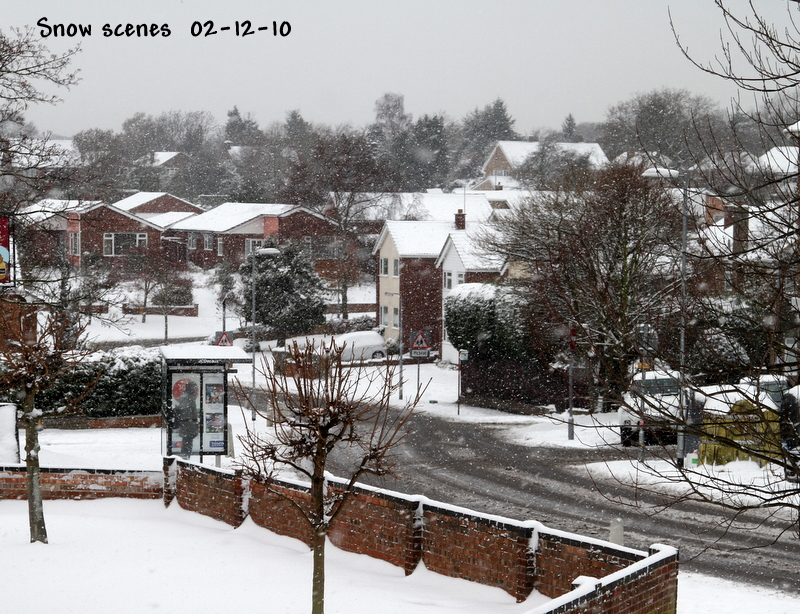 Snow scene from Colchester