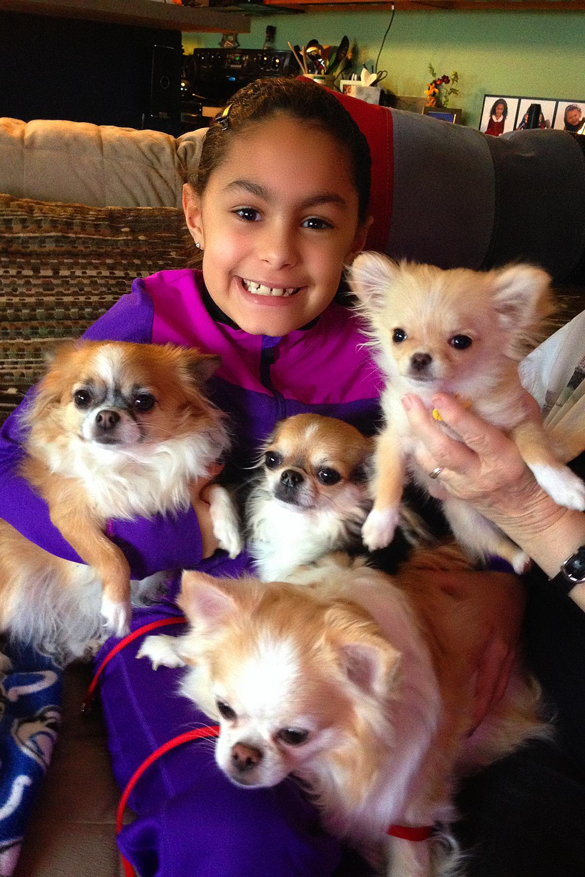 Nikki, Gracie, Stella & Hunny