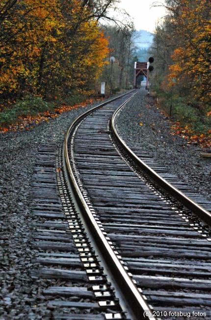 RR tracks and bridge