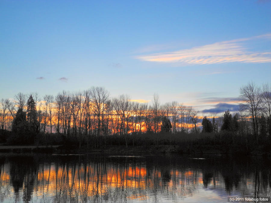 Pond and sunset