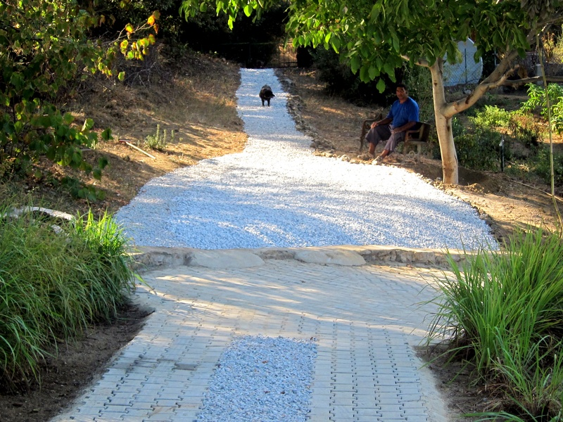 Garage to vineyard path