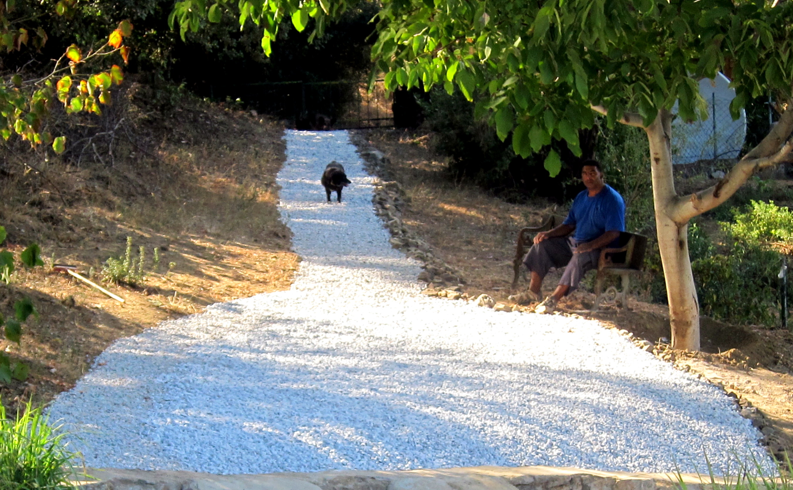 Wine glass path to vineyard