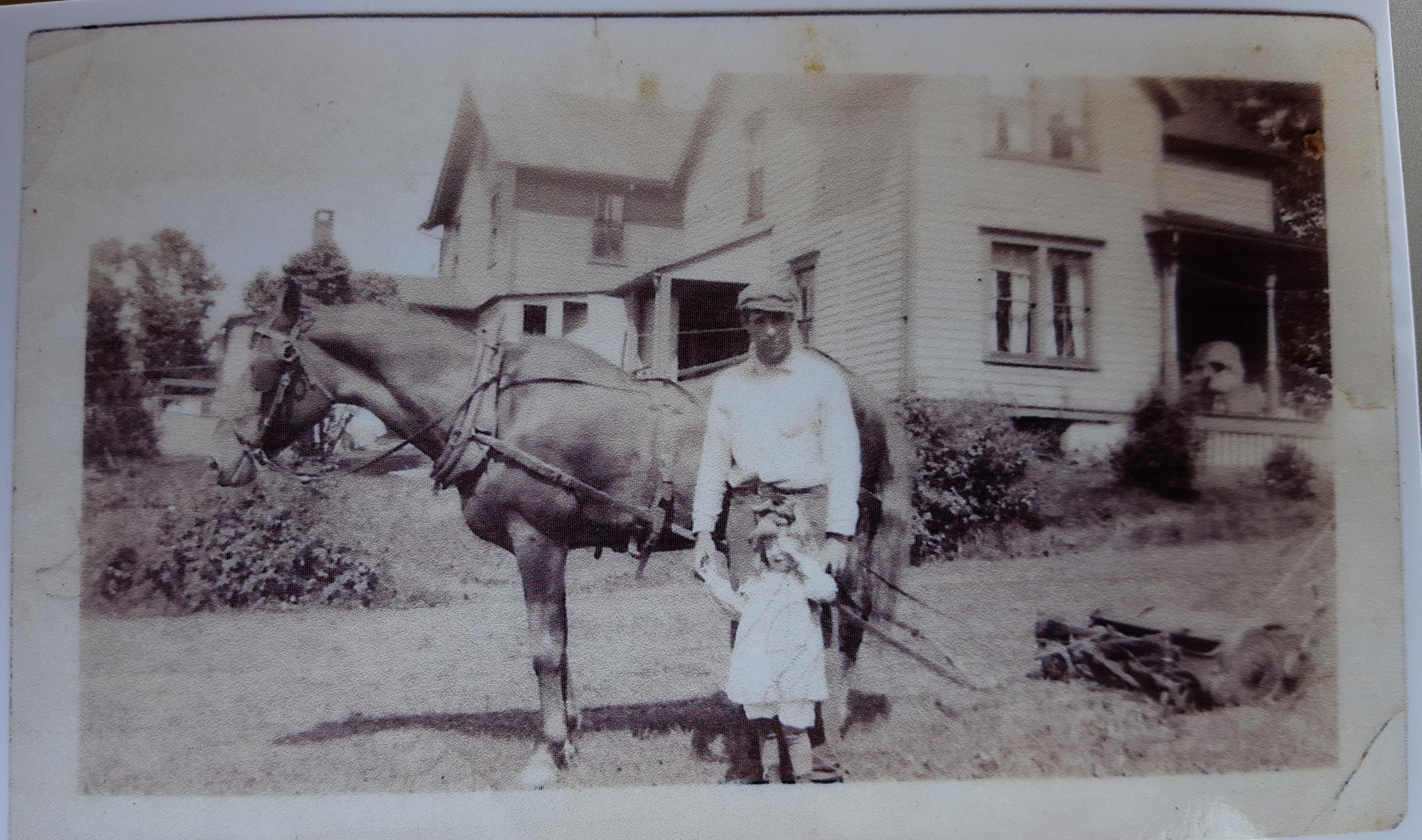 Horse-powered mower (circa 1920)