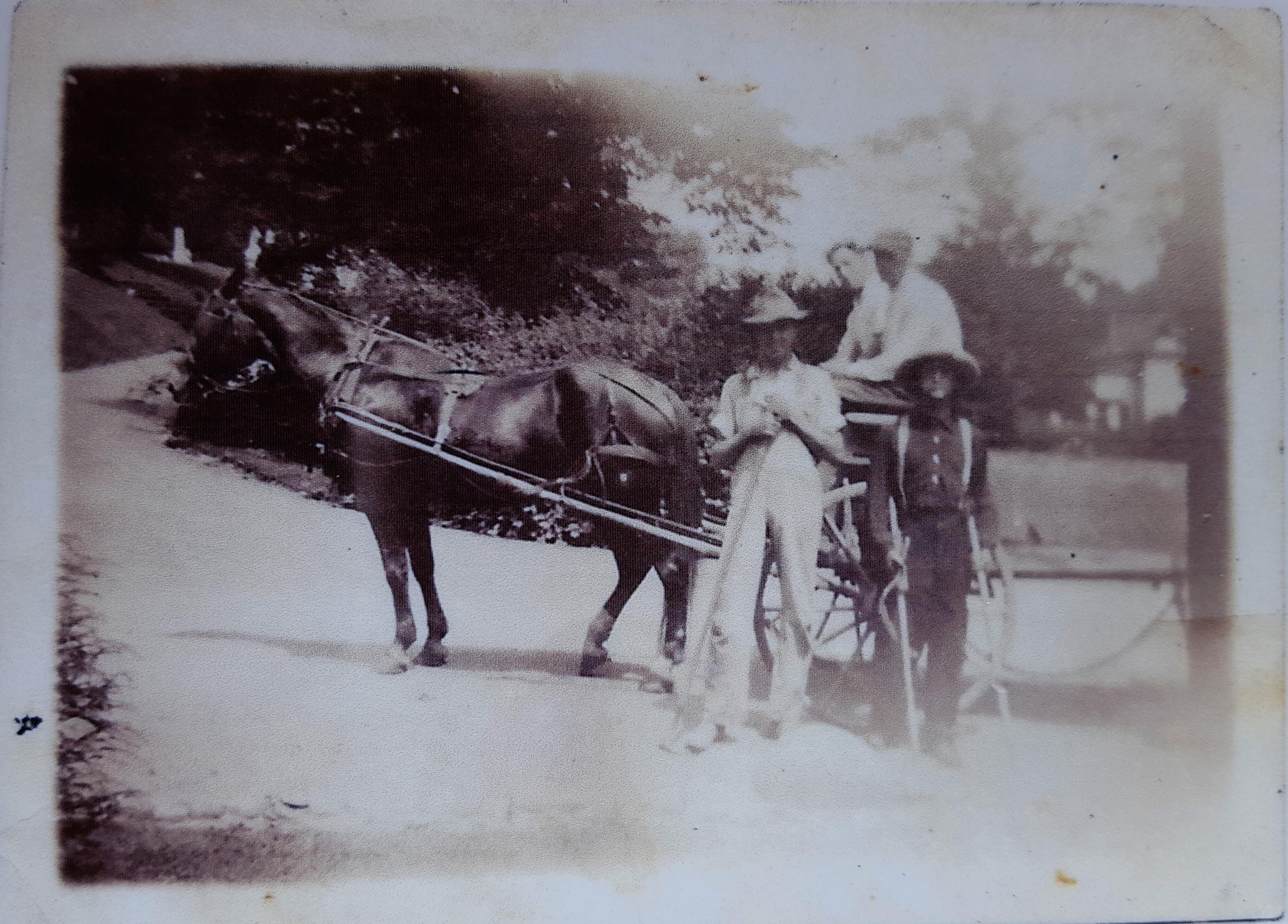 Horse-powered burial crew (circa 1920)