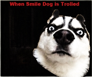 When Smile Dog gets trolled remastered