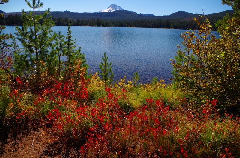 Mt Jefferson and the October colors