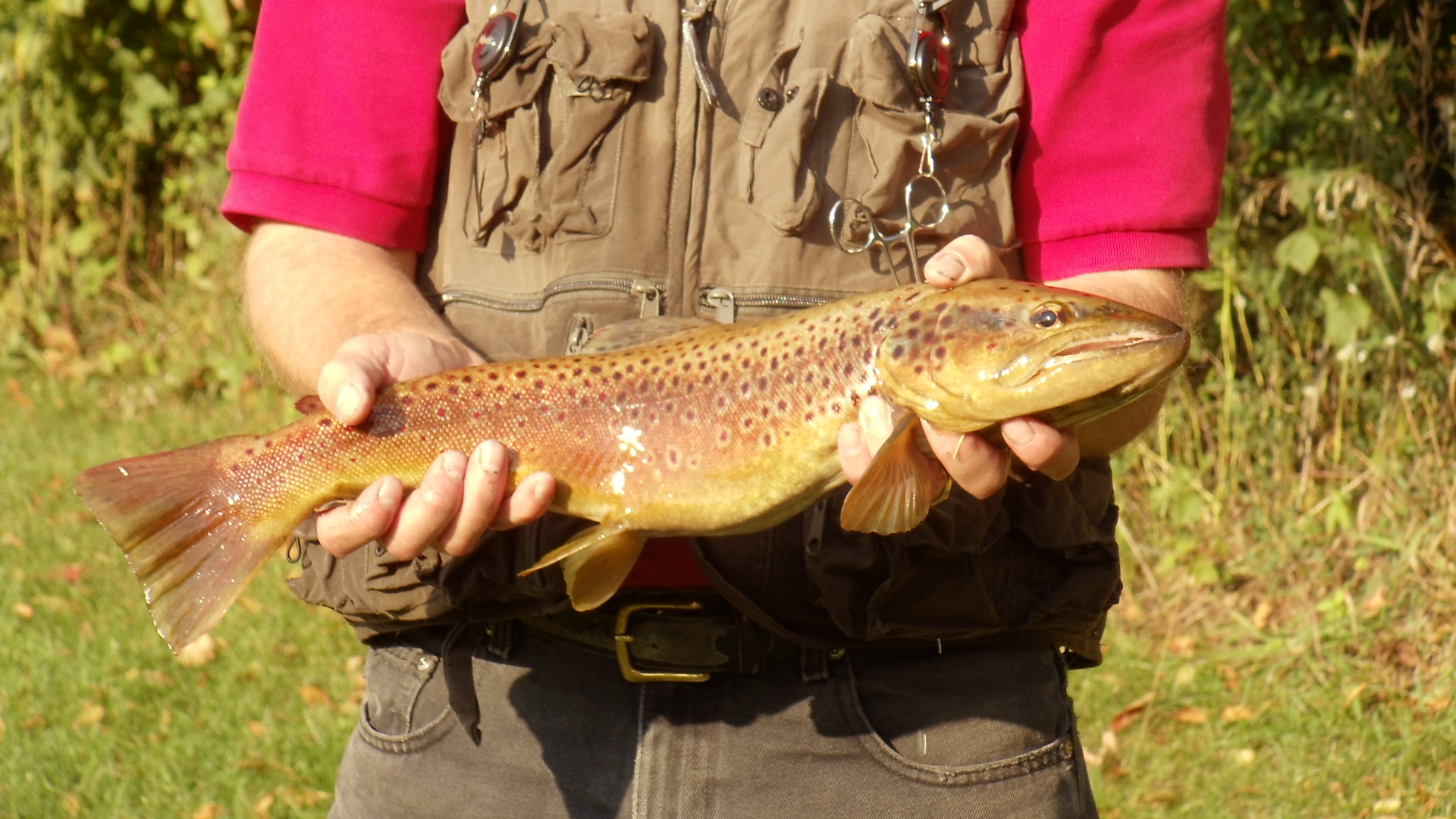 Jim with brown trout