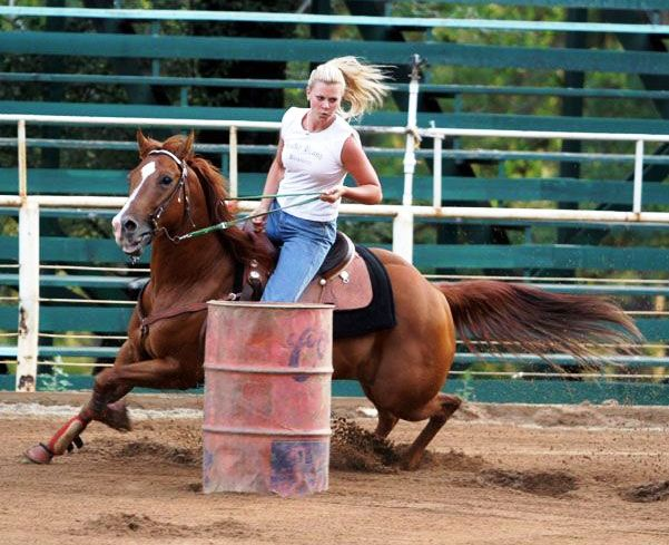 Black quarter horses barrel racing - photo#6