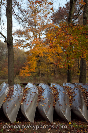 Tyler Park Canoes in Fall