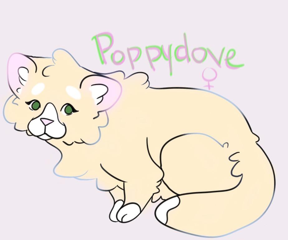 Poppykit (dove)