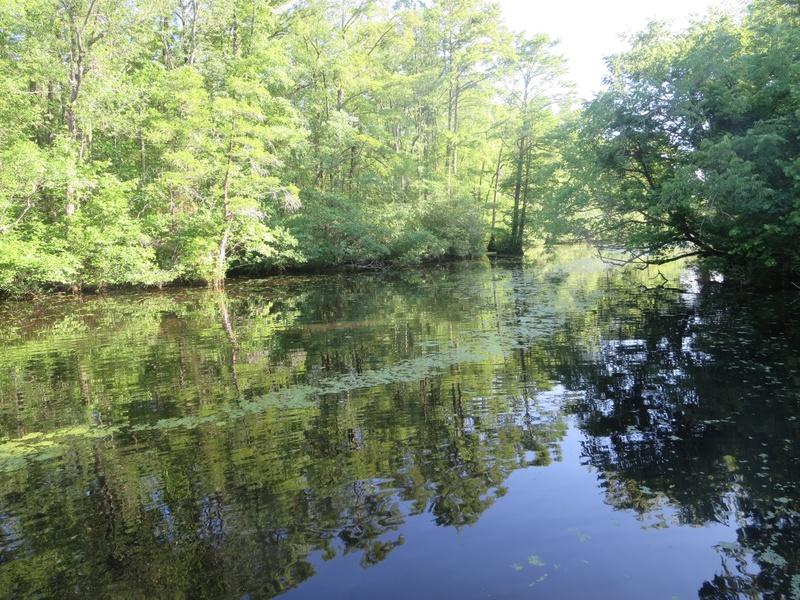 Bennett's Creek landing