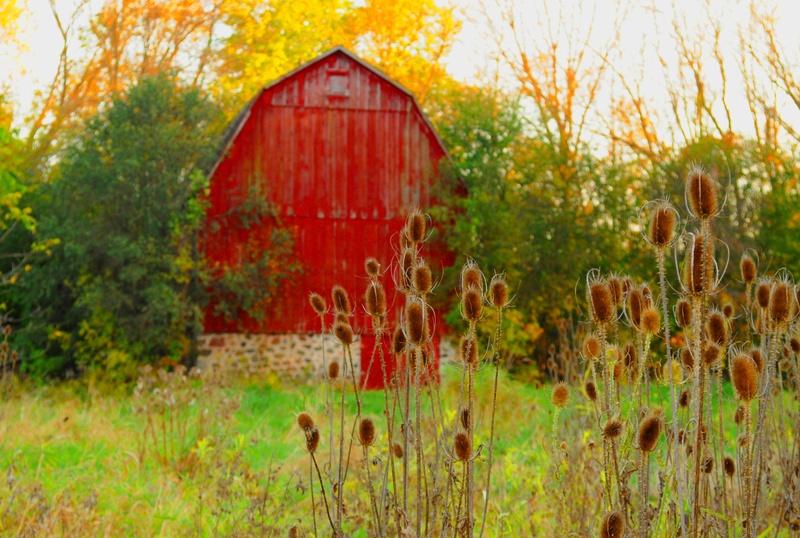 Hidden Barn at Whitnall Golf Course