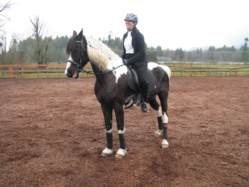 Billy the kid fancied up for dressage schooling day.