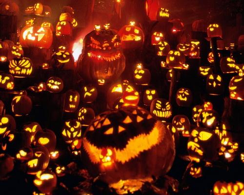 Pumpkin Halloween Background