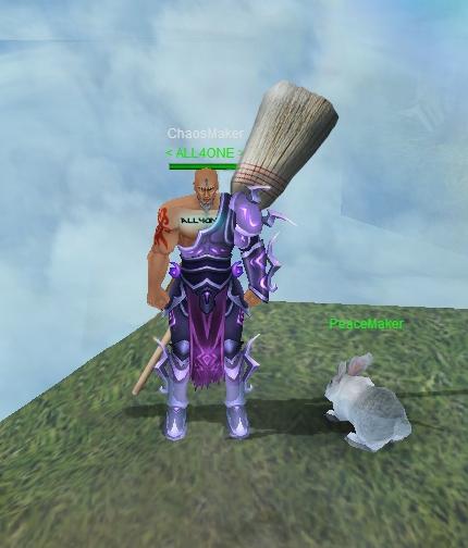 Broomfighter