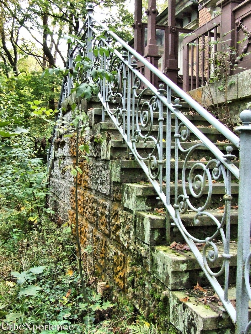 Abandoned Doctor's House