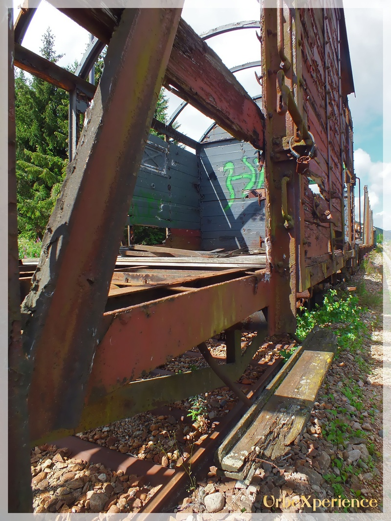 Old trains in decay