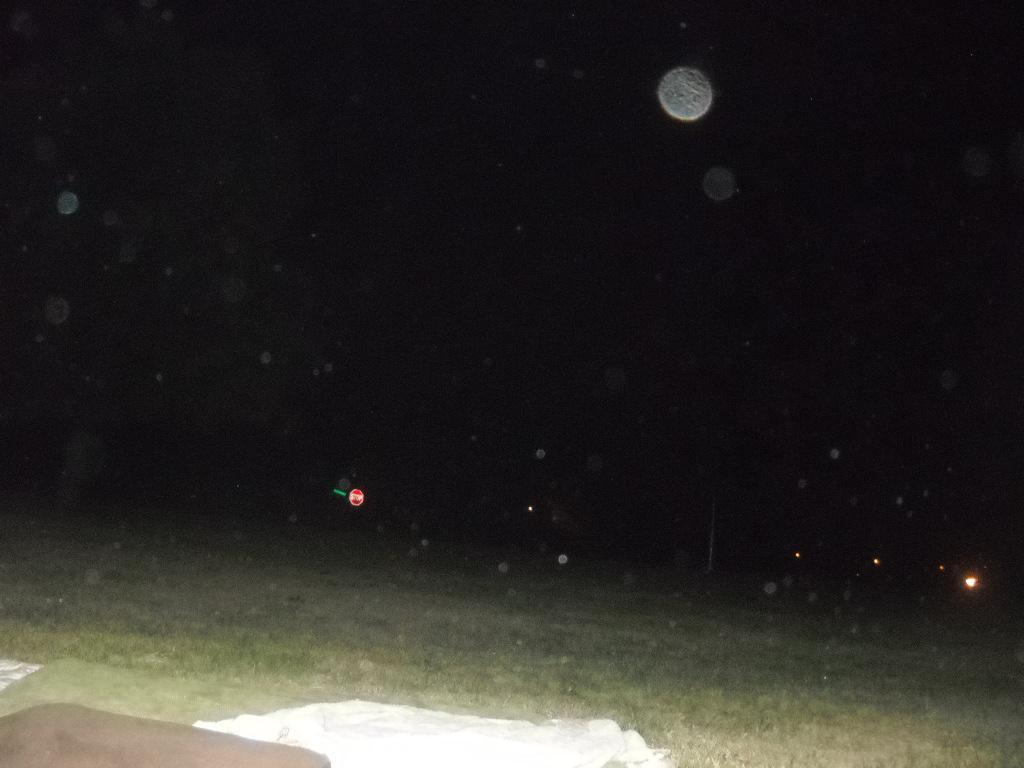 Orbs in backyard 5