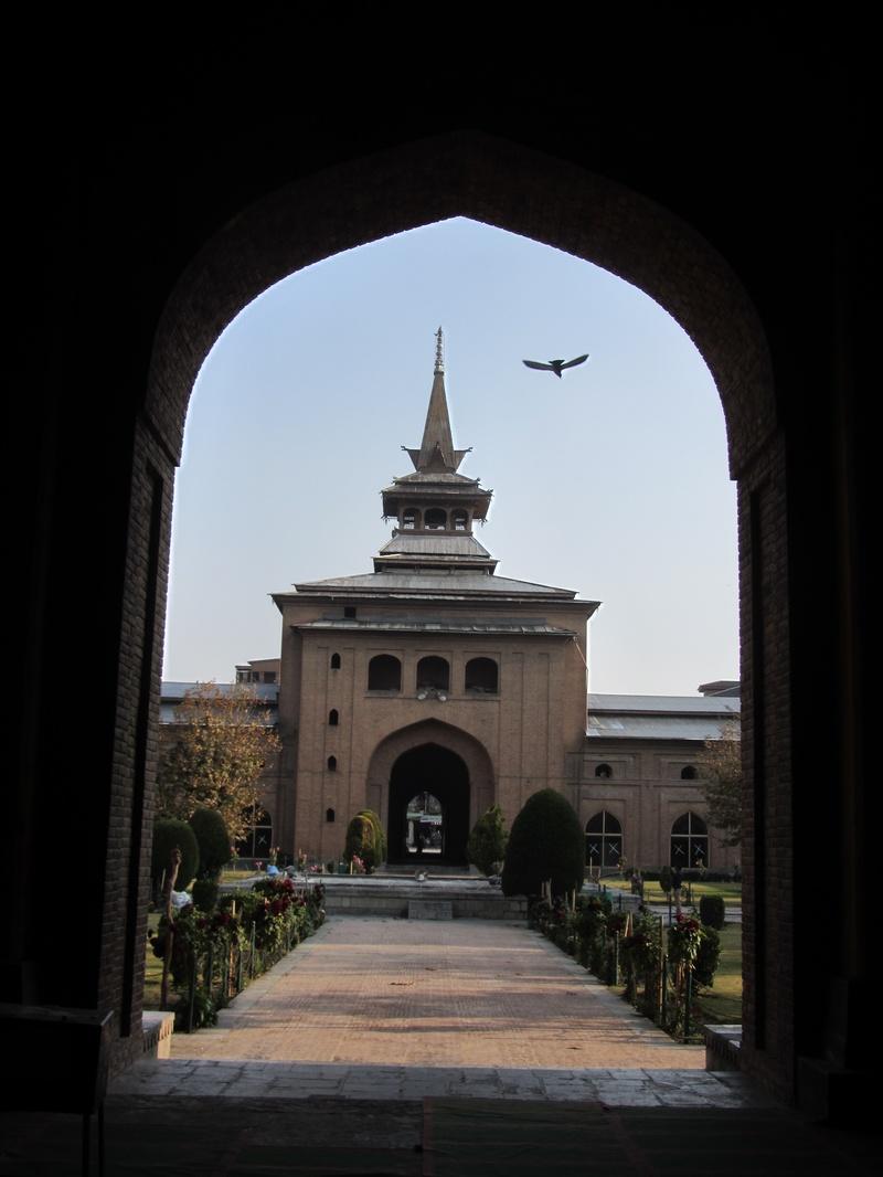dove at Jamma Masjid