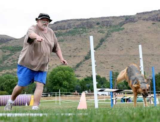 Agility trial, Golden, Colorado